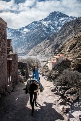 WebberPhoto-Morocco40.jpg