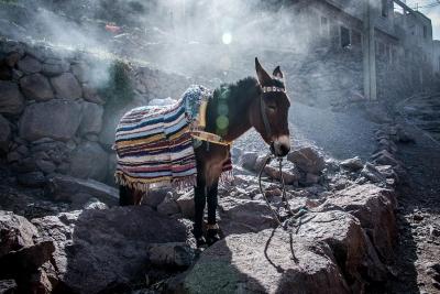 WebberPhoto-Morocco24.jpg